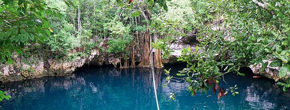 Cenote Verde Lucero .Ruta de los Cenotes en Puerto Morelos
